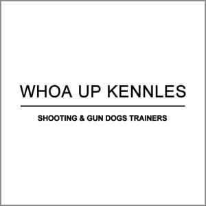 portfolio-whoa-up-kennels-500